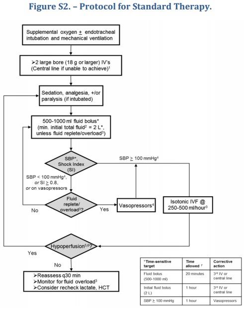 process protocoll